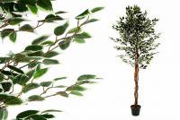 Műnövény - Fikusz 185 cm