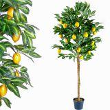 Műnövény fa TUIN 184 cm - citromfa